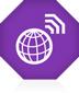 Internet Access Icon